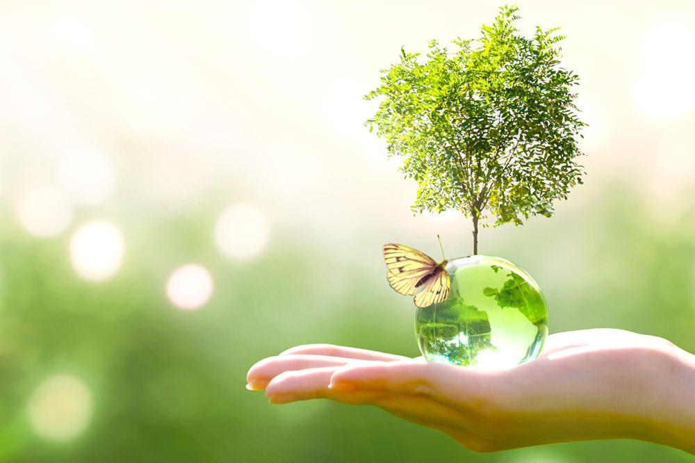 Rispetto dell'ambiente e attenzione al benessere