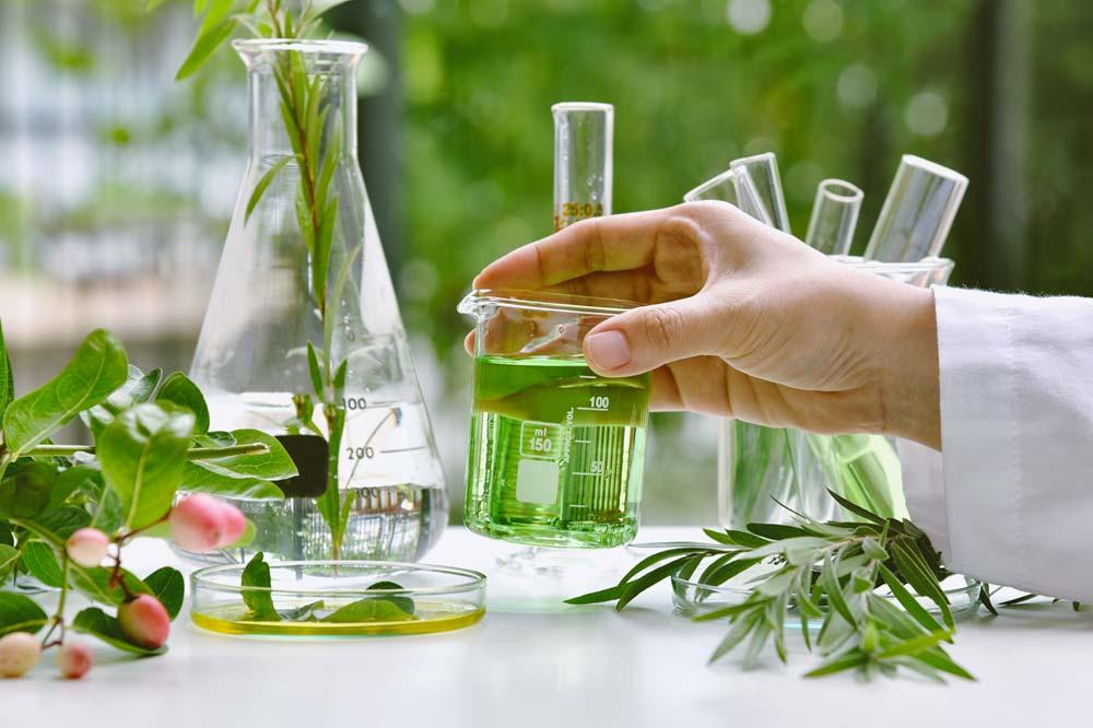 Sviluppo e ricerca laboratori Donini